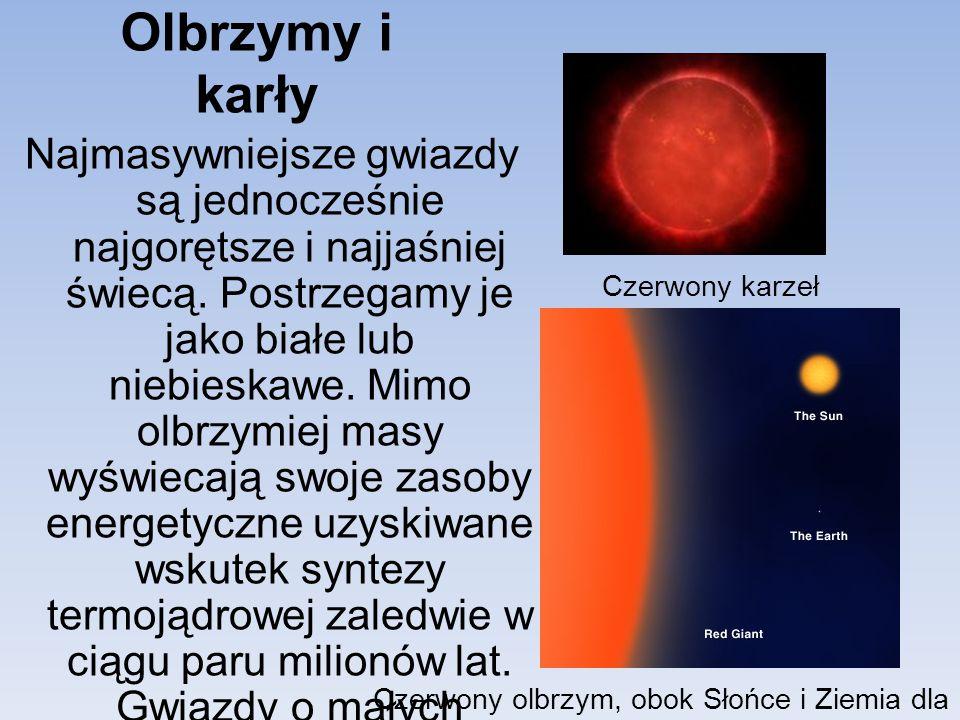 Olbrzymy i karły Najmasywniejsze gwiazdy są jednocześnie najgorętsze i najjaśniej świecą. Postrzegamy je jako białe lub niebieskawe. Mimo olbrzymiej m