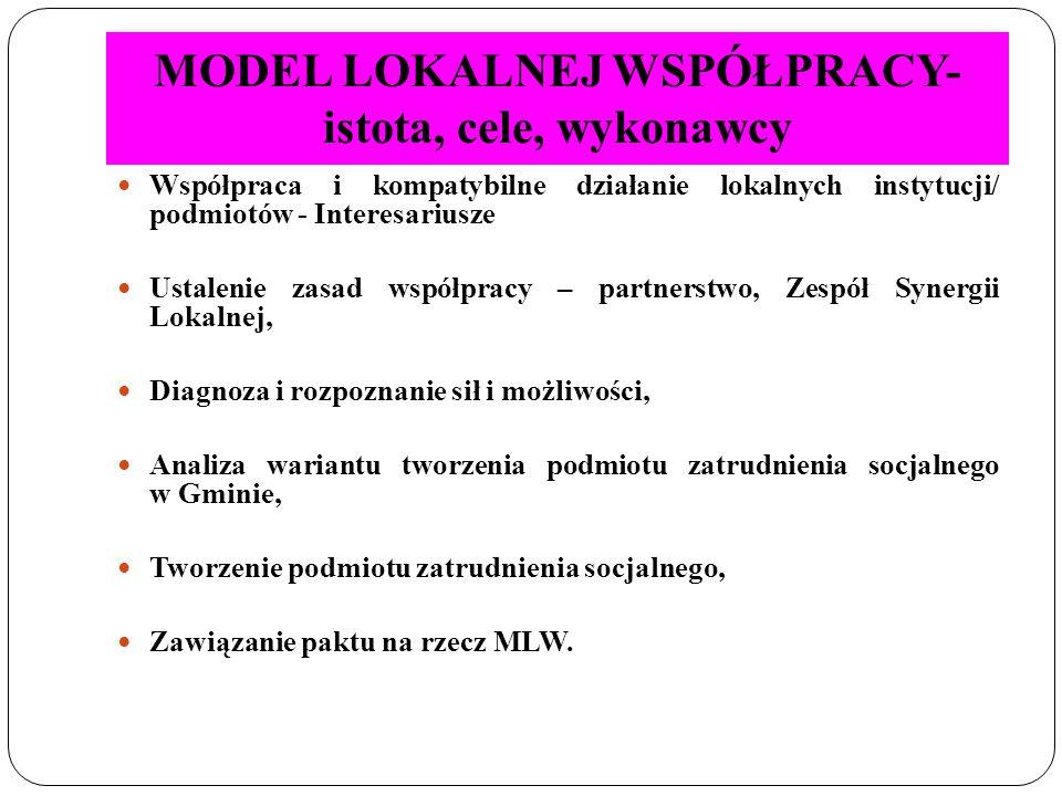 MODEL LOKALNEJ WSPÓŁPRACY - Instrumenty I element MLW Zespół Synergii Lokalnej II element MLW Pakt na rzecz MLW III element MLW Podmiot zatrudnienia socjalnego