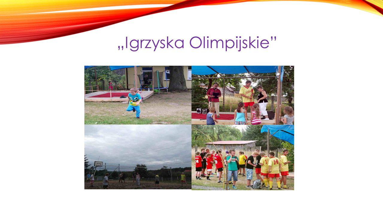 """Podczas wakacji 2013 odbyły się tu """"Igrzyska Olimpijskie ."""