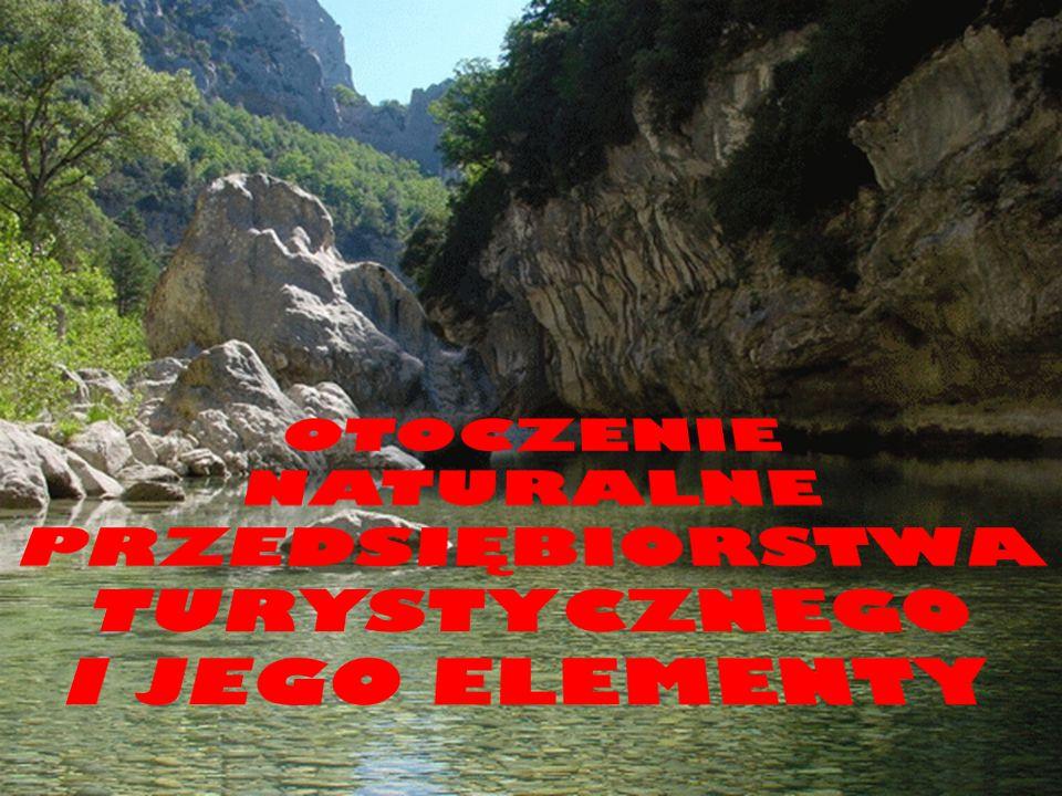 DEFINICJA Przedsiębiorstwo turystyczne - jednostka organizacyjna prowadząca działalność gospodarczą, polegająca na odpłatnym świadczeniu usług uczestnikom różnych typów i rodzajów turystyki Andrzej Rapacz