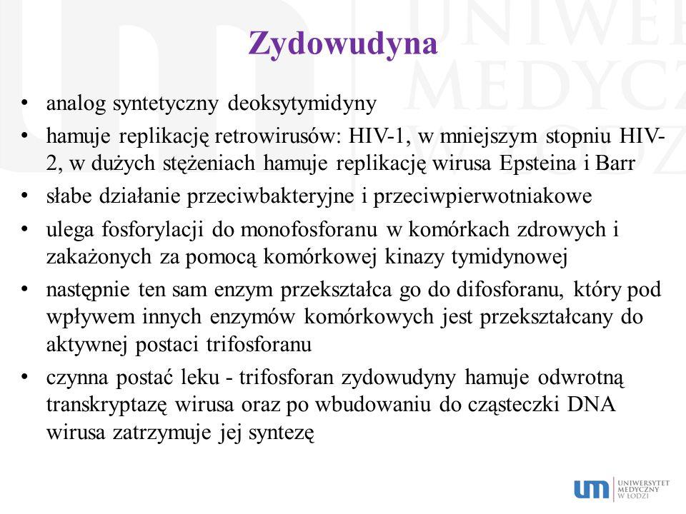 Zydowudyna analog syntetyczny deoksytymidyny hamuje replikację retrowirusów: HIV-1, w mniejszym stopniu HIV- 2, w dużych stężeniach hamuje replikację