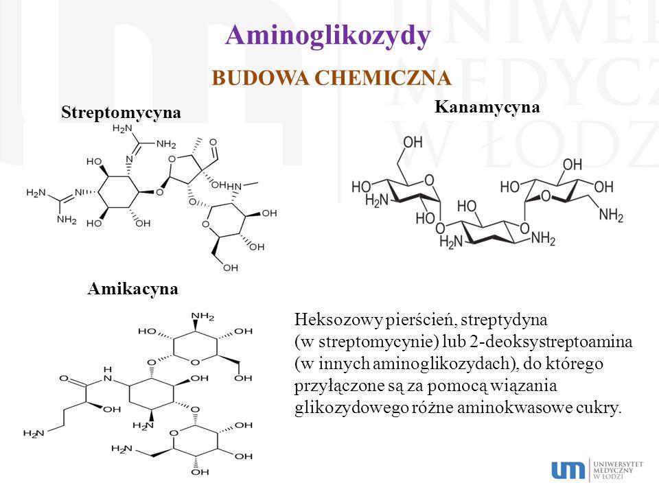 Aminoglikozydy BUDOWA CHEMICZNA Kanamycyna Streptomycyna Amikacyna Heksozowy pierścień, streptydyna (w streptomycynie) lub 2-deoksystreptoamina (w inn