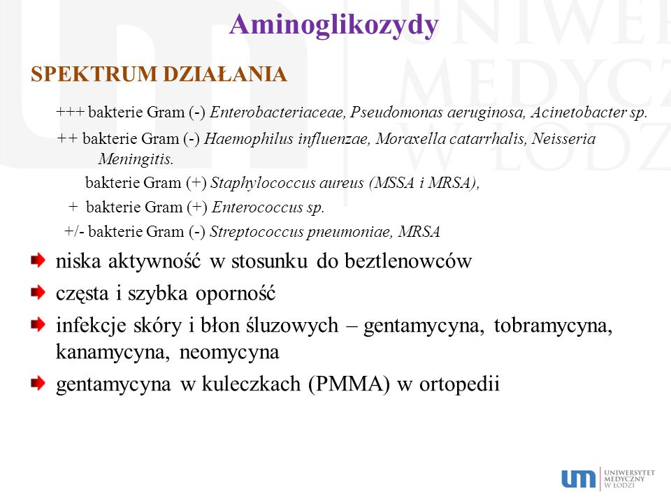 Aminoglikozydy SPEKTRUM DZIAŁANIA +++ bakterie Gram (-) Enterobacteriaceae, Pseudomonas aeruginosa, Acinetobacter sp. ++ bakterie Gram (-) Haemophilus