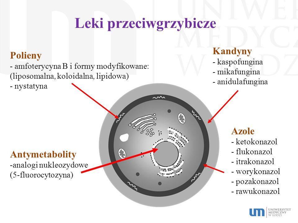 Leki przeciwgrzybicze Polieny - amfoterycyna B i formy modyfikowane: (liposomalna, koloidalna, lipidowa) - nystatyna Kandyny - kaspofungina - mikafung