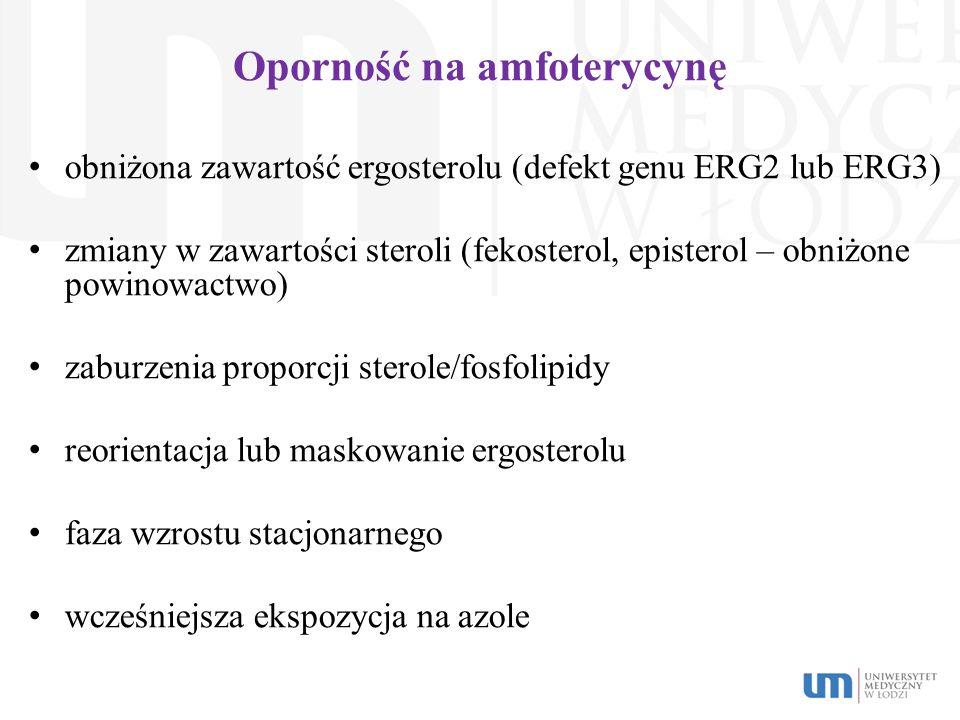 Oporność na amfoterycynę obniżona zawartość ergosterolu (defekt genu ERG2 lub ERG3) zmiany w zawartości steroli (fekosterol, episterol – obniżone powi