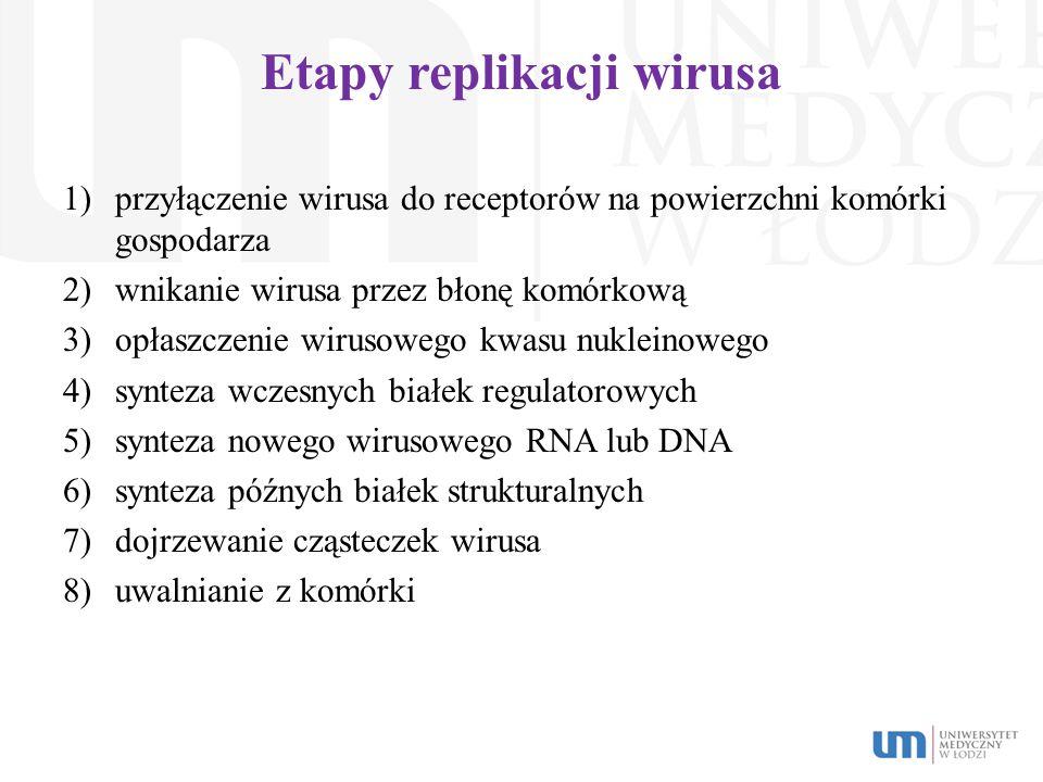 Etapy replikacji wirusa 1)przyłączenie wirusa do receptorów na powierzchni komórki gospodarza 2)wnikanie wirusa przez błonę komórkową 3)opłaszczenie w