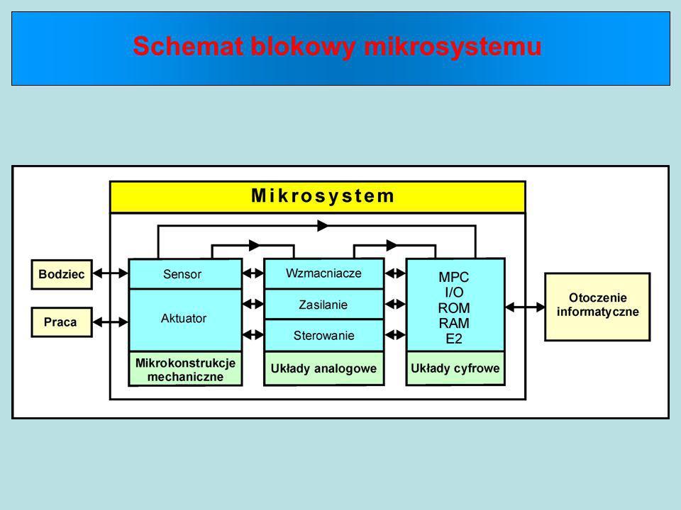 W Europie powołano jeden ogólnoeuropejski i kilka narodowych programów rozwoju mikrosystemów pod nazwą EUROPRACTICE, który podzielono na pięć głównych działów:  pomiary fizyczne i motoryzacja (CC1)  mikrourządzenia biomedyczne i zastosowania w medycynie (CC2a)  mikrosystemy bioanalityczne dla nauki o życiu i ochrony środowiska (CC2b)  MEOMS, urządzenia peryferyjne i telekomunikacyjne (CC3)  mikromaszyny i mikroaktuatory, kontrola procesów i zastosowania w narzędziach (CC4)  mikrofluidyka i mikrosystemy cieczowe (CC5)  czujniki promieniowania, areonautyka i zastosowania instrumentalne w aparaturze naukowej (CC6a)  systemy obrazowe CMOS (CC6b ).