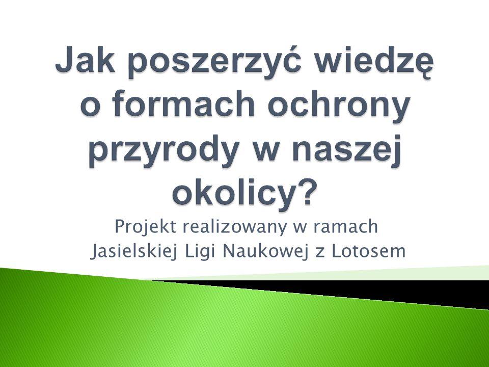 Projekt realizowany w ramach Jasielskiej Ligi Naukowej z Lotosem