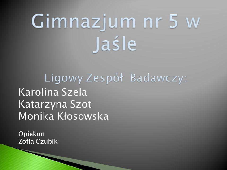 Karolina Szela Katarzyna Szot Monika Kłosowska Opiekun Zofia Czubik