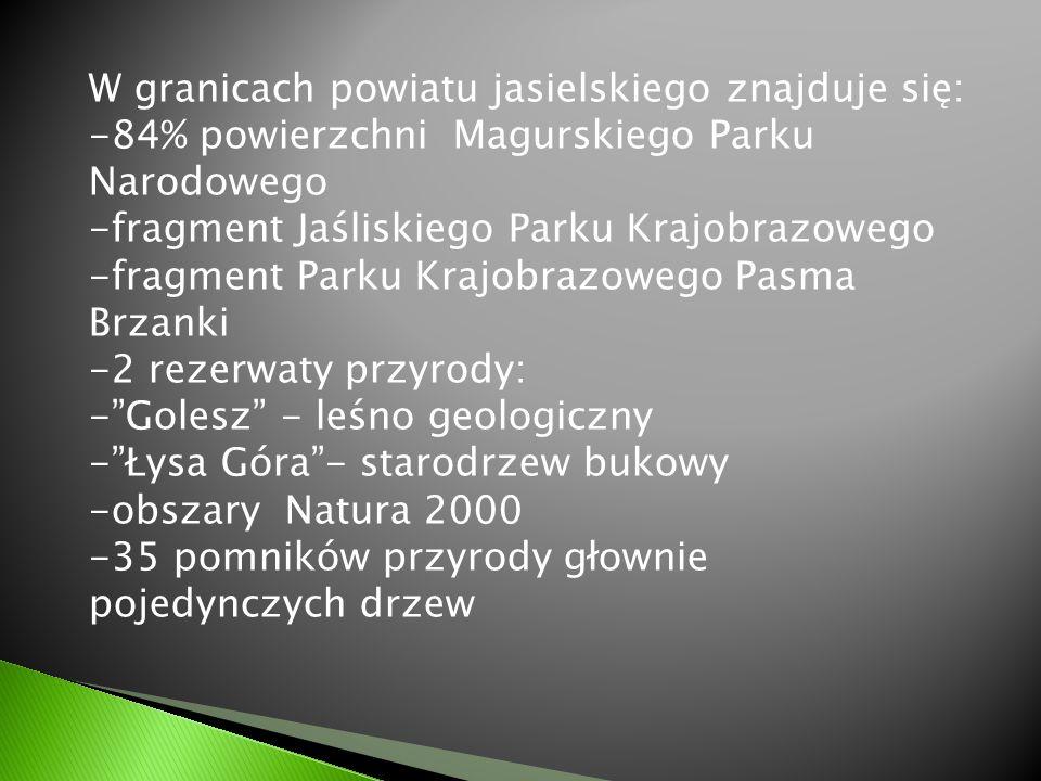 W granicach powiatu jasielskiego znajduje się: -84% powierzchni Magurskiego Parku Narodowego -fragment Jaśliskiego Parku Krajobrazowego -fragment Park