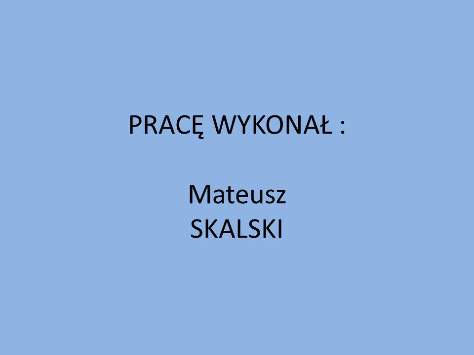 DZIĘKUJĘ ZA UWAGĘ Bibliografia: http://www.mmsilesia.pl/238859/2013/12/16/swieta-na-slasku-slaskie-zwyczaje-bozonarodzeniowe?category=news http://www.