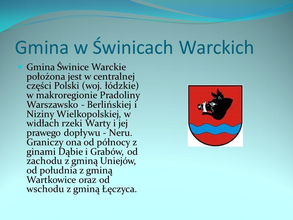 Gmina w Świnicach Warckich Gmina Świnice Warckie położona jest w centralnej części Polski (woj. łódzkie) w makroregionie Pradoliny Warszawsko - Berliń