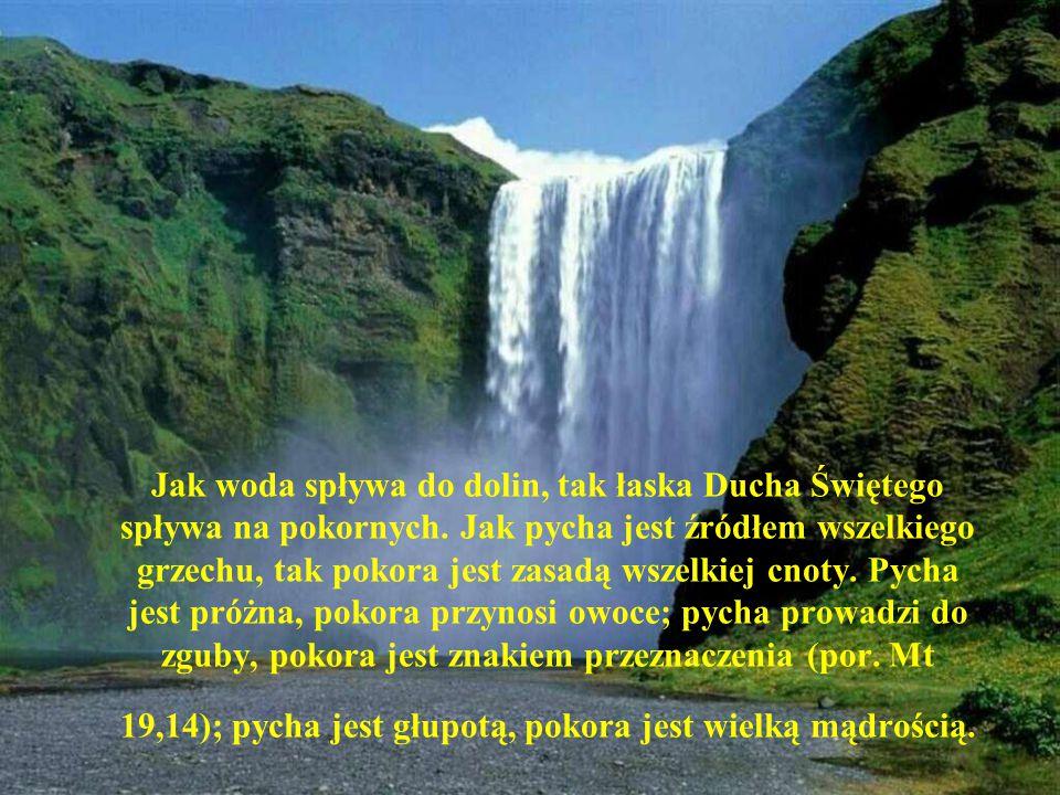 Jak woda spływa do dolin, tak łaska Ducha Świętego spływa na pokornych. Jak pycha jest źródłem wszelkiego grzechu, tak pokora jest zasadą wszelkiej cn