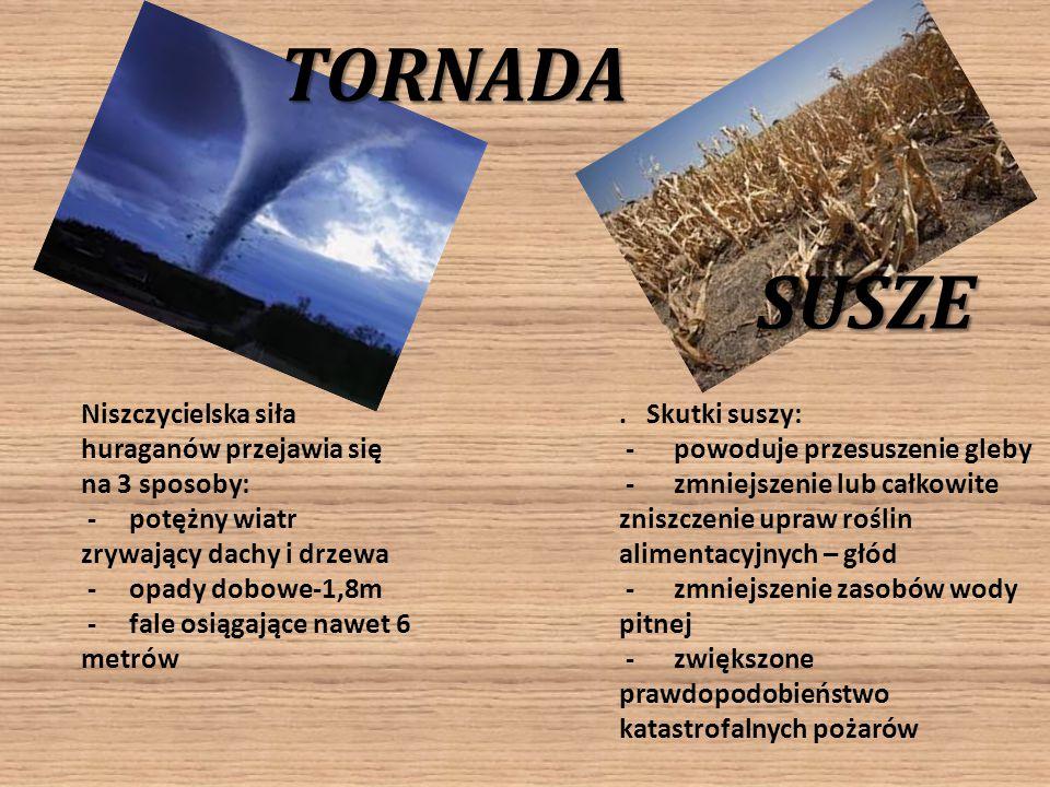 TORNADA SUSZE Niszczycielska siła huraganów przejawia się na 3 sposoby: - potężny wiatr zrywający dachy i drzewa - opady dobowe-1,8m - fale osiągające