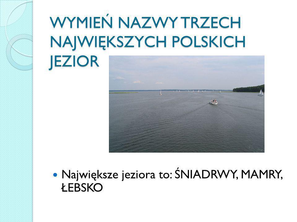 WYMIEŃ NAZWY TRZECH NAJWIĘKSZYCH POLSKICH JEZIOR Największe jeziora to: ŚNIADRWY, MAMRY, ŁEBSKO