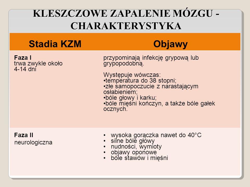 Stadia KZMObjawy Faza I trwa zwykle około 4-14 dni przypominają infekcję grypową lub grypopodobną.
