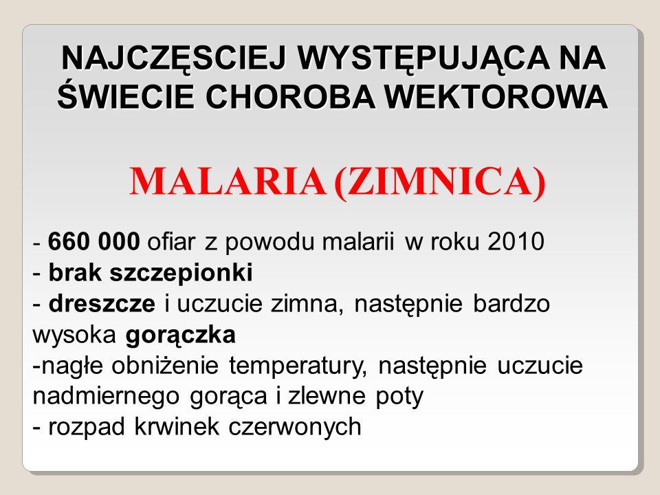 NAJCZĘSCIEJ WYSTĘPUJĄCA NA ŚWIECIE CHOROBA WEKTOROWA MALARIA (ZIMNICA) - 660 000 ofiar z powodu malarii w roku 2010 - brak szczepionki - dreszcze i uczucie zimna, następnie bardzo wysoka gorączka -nagłe obniżenie temperatury, następnie uczucie nadmiernego gorąca i zlewne poty - rozpad krwinek czerwonych