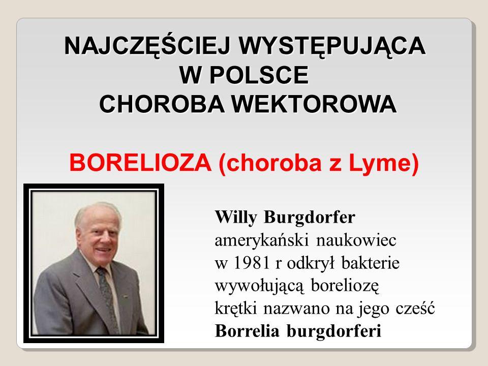 NAJCZĘŚCIEJ WYSTĘPUJĄCA W POLSCE CHOROBA WEKTOROWA CHOROBA WEKTOROWA BORELIOZA (choroba z Lyme) Willy Burgdorfer amerykański naukowiec w 1981 r odkrył bakterie wywołującą boreliozę krętki nazwano na jego cześć Borrelia burgdorferi