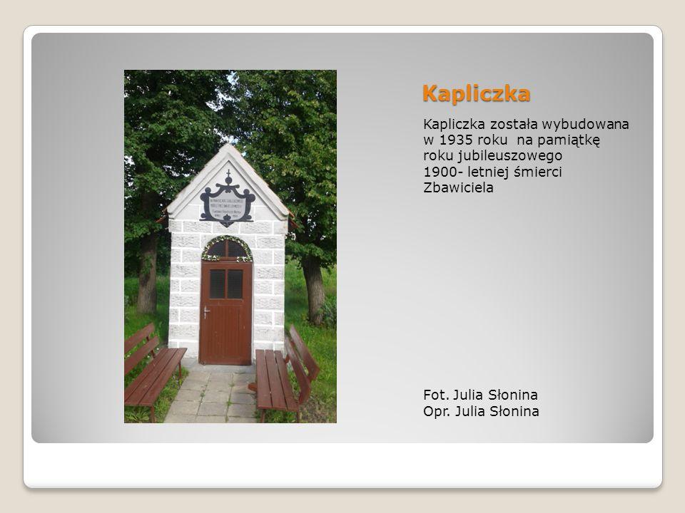 Kapliczka Kapliczka została wybudowana w 1935 roku na pamiątkę roku jubileuszowego 1900- letniej śmierci Zbawiciela Fot.