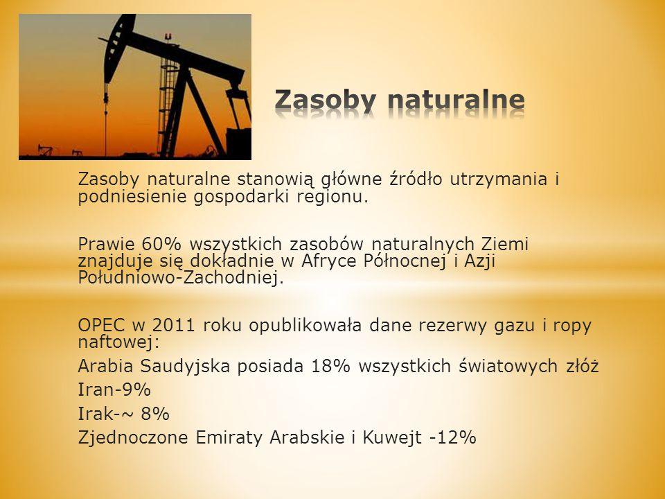 Zasoby naturalne stanowią główne źródło utrzymania i podniesienie gospodarki regionu. Prawie 60% wszystkich zasobów naturalnych Ziemi znajduje się dok