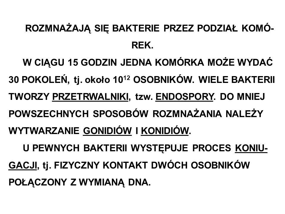 CYTOPLAZMA BAKTERII ZAWIERA ORGANELLE KOMÓRKOWE.