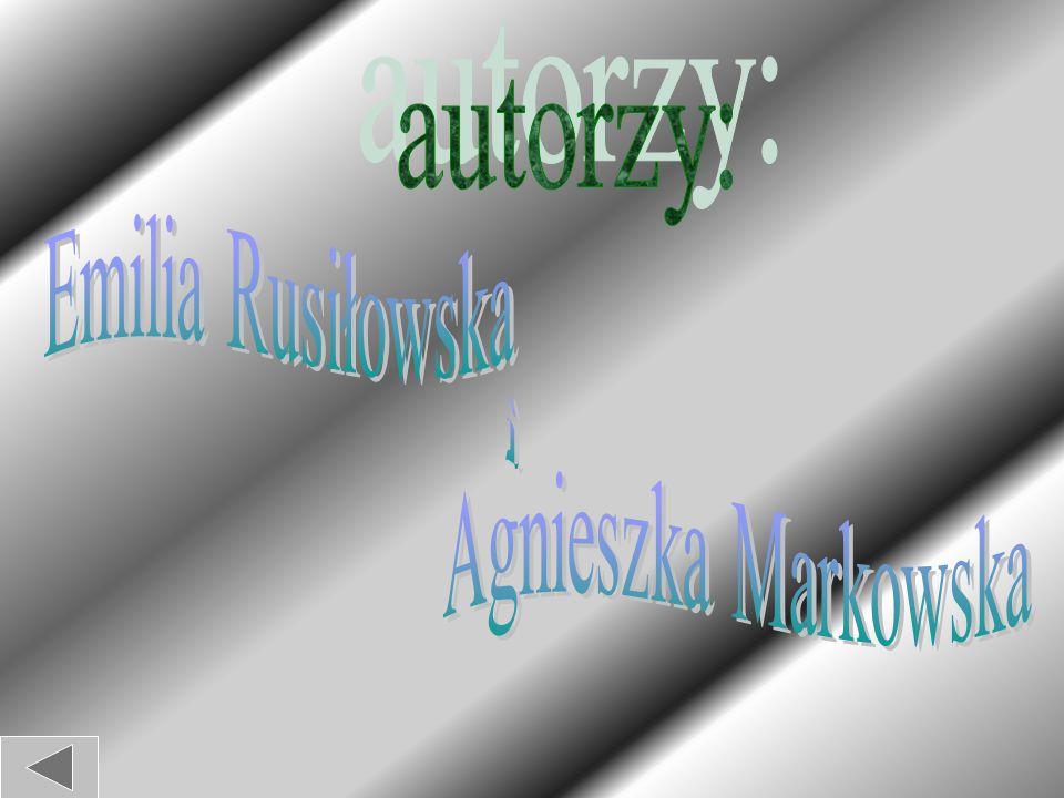 """Przyjaciel Ignacego Prądzyńskiego Klemens Kołaczkowski tak pisał w biografii generała: """"W stosunkach z podwładnymi Prądzyński był przyjacielski, liberalny, względny, lecz może zanadto poufały."""