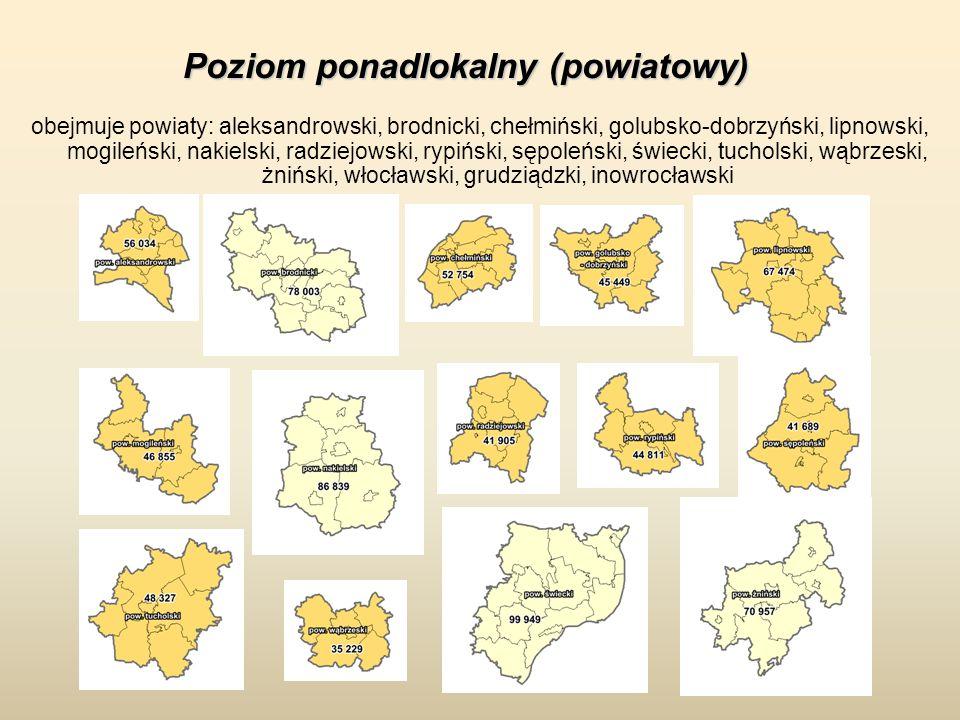 Poziom ponadlokalny (powiatowy) obejmuje powiaty: aleksandrowski, brodnicki, chełmiński, golubsko-dobrzyński, lipnowski, mogileński, nakielski, radzie