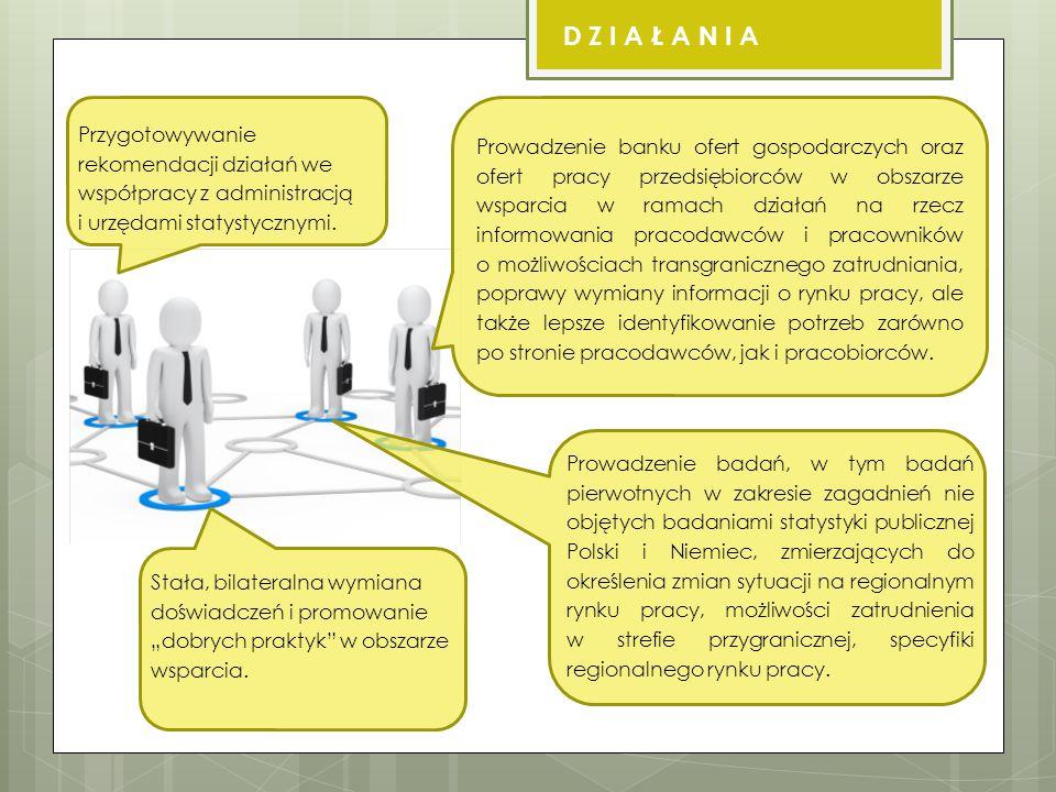 Przygotowywanie rekomendacji działań we współpracy z administracją i urzędami statystycznymi.