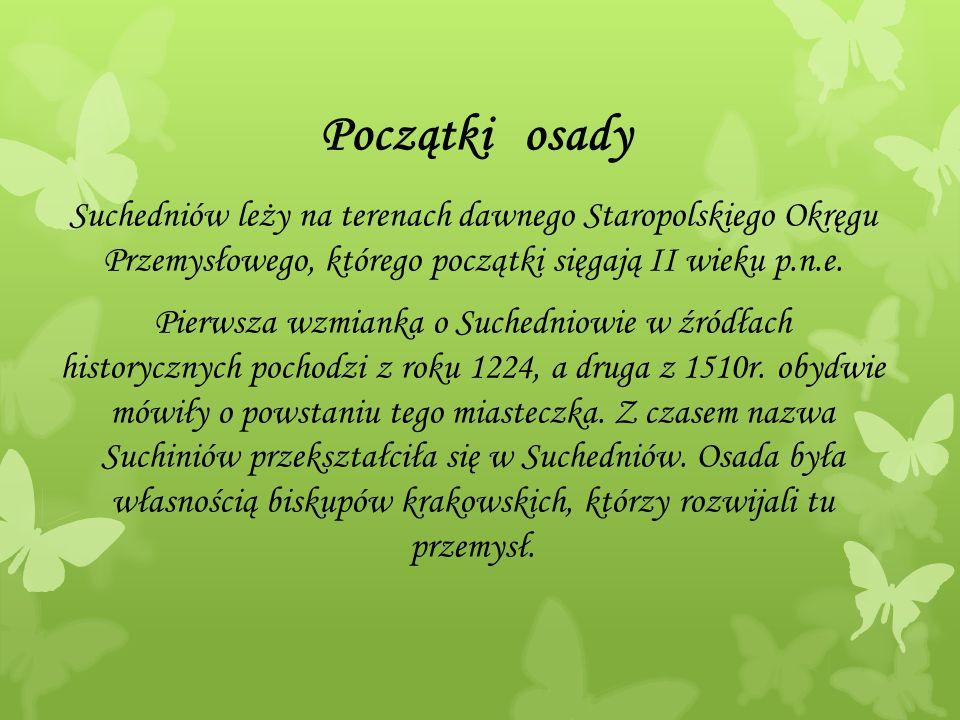 Początki osady Suchedniów leży na terenach dawnego Staropolskiego Okręgu Przemysłowego, którego początki sięgają II wieku p.n.e. Pierwsza wzmianka o S