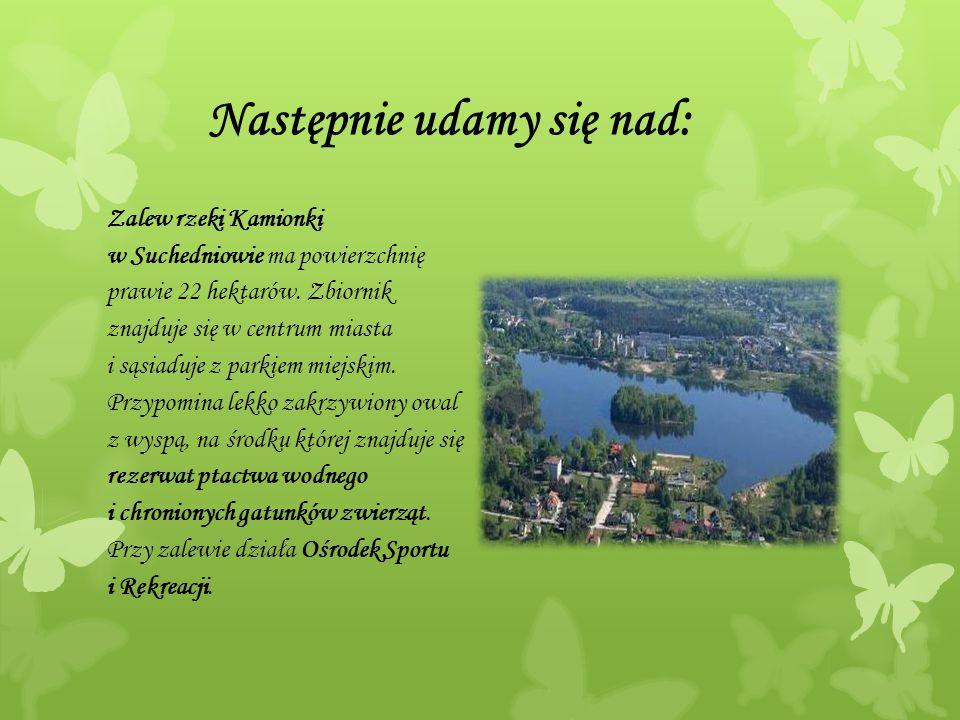 Następnie udamy się nad: Zalew rzeki Kamionki w Suchedniowie ma powierzchnię prawie 22 hektarów. Zbiornik znajduje się w centrum miasta i sąsiaduje z
