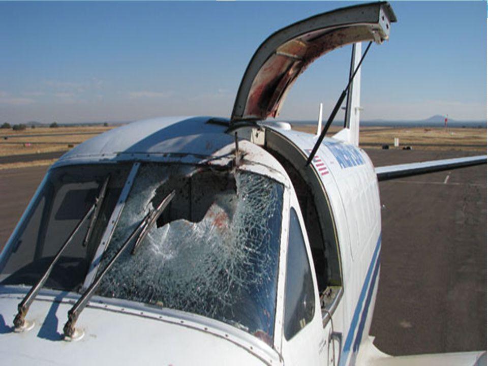 Służba kontroli ruchu lotniczego (ATC) Skarb Państwa nie odpowiada za zobowiązania Agencji Art.