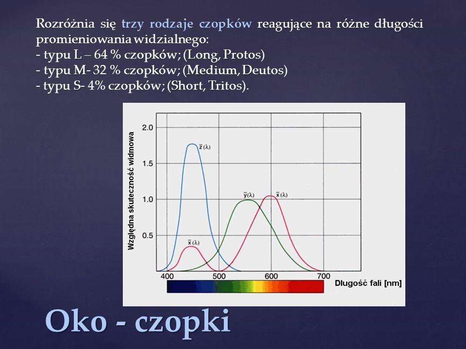 Oko - czopki Rozróżnia się trzy rodzaje czopków reagujące na różne długości promieniowania widzialnego: LLP - typu L – 64 % czopków; (Long, Protos) MMD - typu M- 32 % czopków; (Medium, Deutos) SST - typu S- 4% czopków; (Short, Tritos).