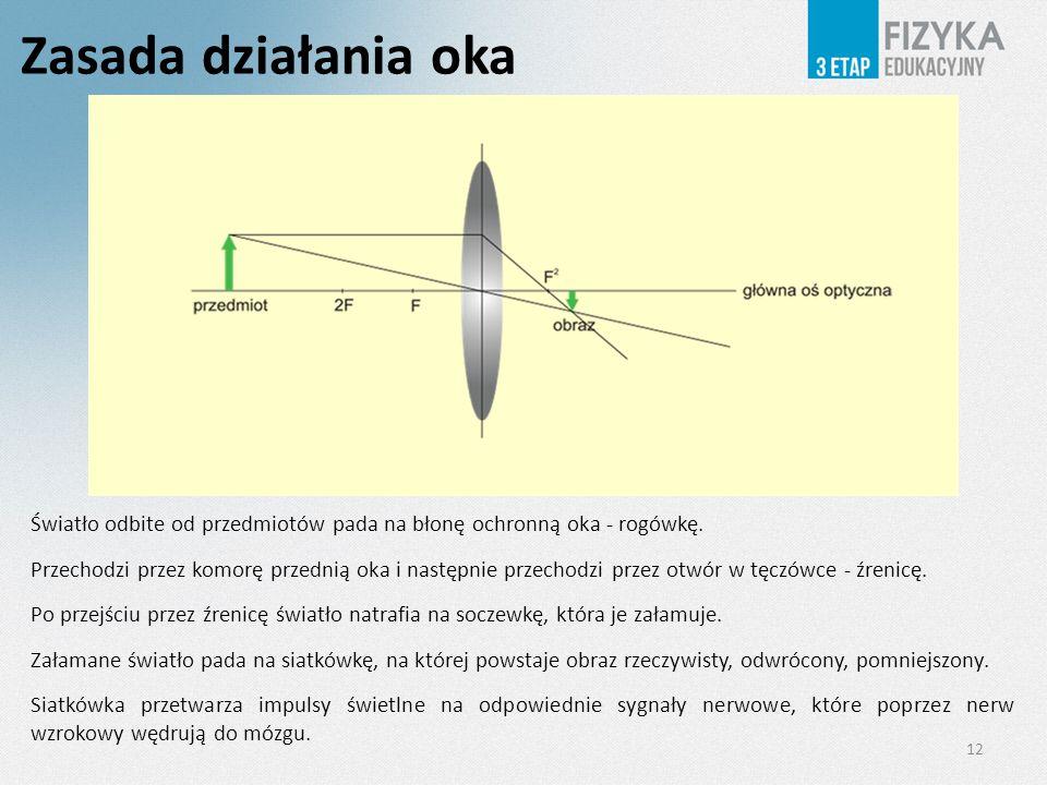 Zasada działania oka 12 Światło odbite od przedmiotów pada na błonę ochronną oka - rogówkę. Przechodzi przez komorę przednią oka i następnie przechodz
