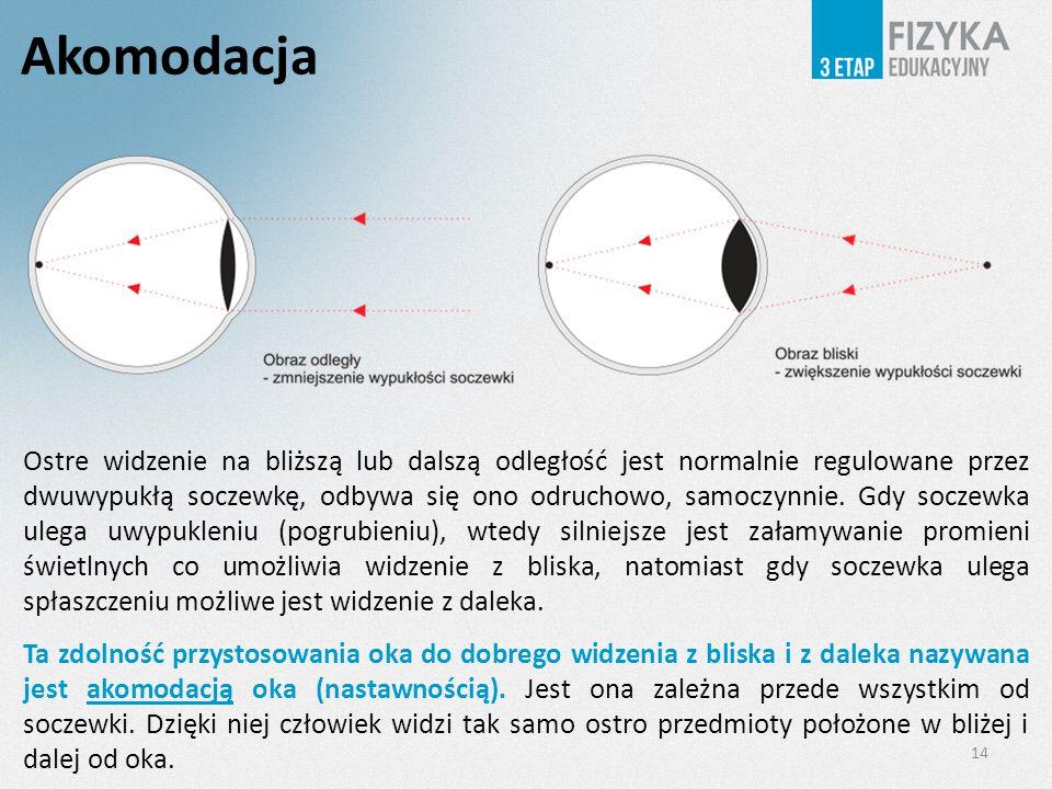 Akomodacja 14 Ostre widzenie na bliższą lub dalszą odległość jest normalnie regulowane przez dwuwypukłą soczewkę, odbywa się ono odruchowo, samoczynnie.