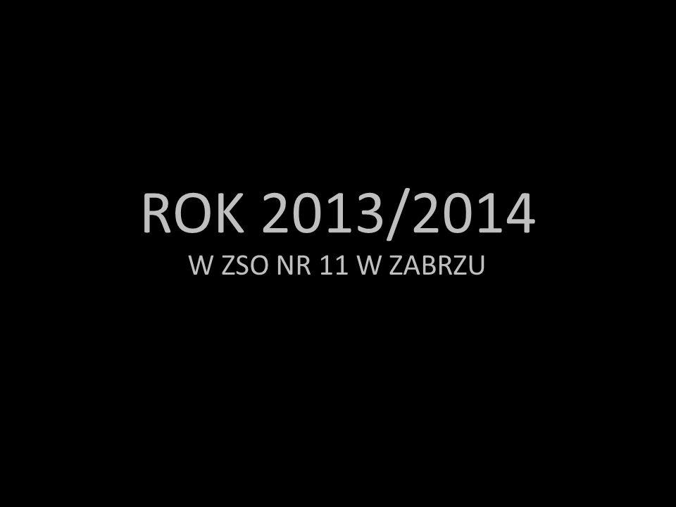 ROK 2013/2014 W ZSO NR 11 W ZABRZU