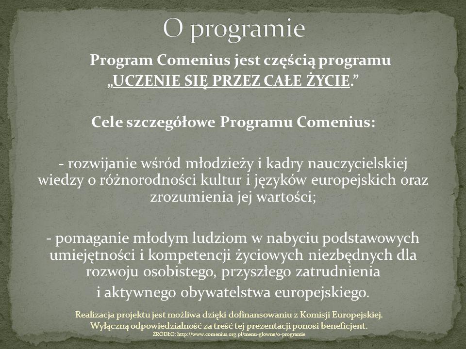 """Program Comenius jest częścią programu """"UCZENIE SIĘ PRZEZ CAŁE ŻYCIE."""" Cele szczegółowe Programu Comenius: - rozwijanie wśród młodzieży i kadry nauczy"""