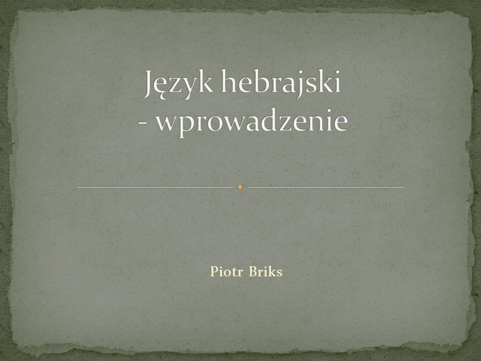 Piotr Briks