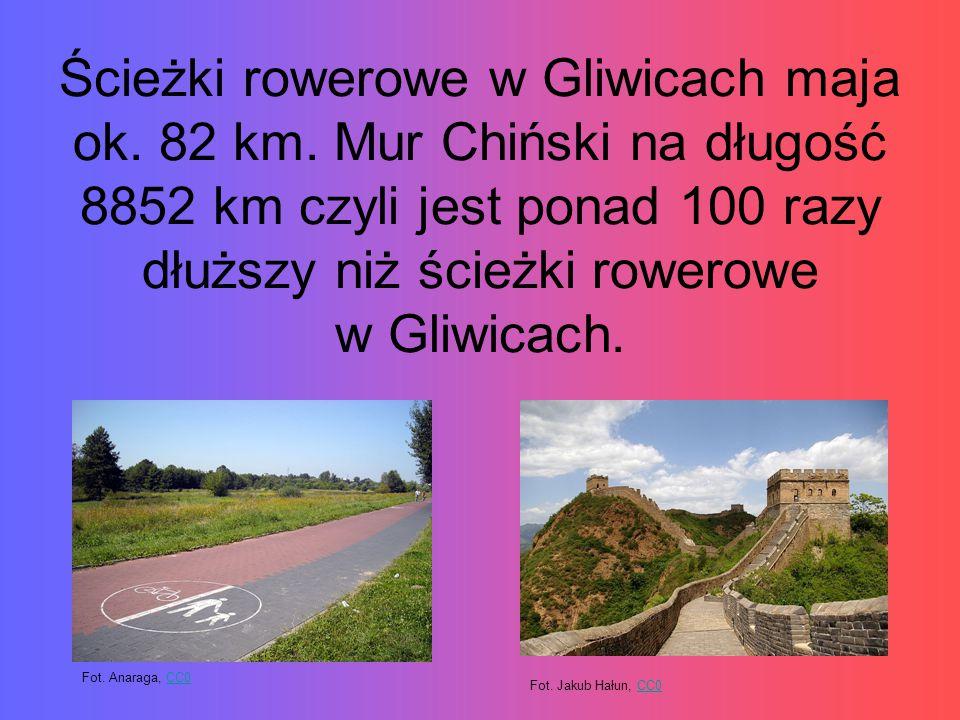 Ścieżki rowerowe w Gliwicach maja ok.82 km.