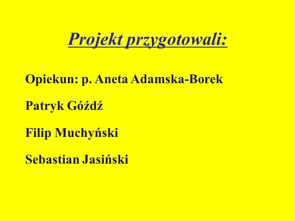 Projekt przygotowali: Opiekun: p. Aneta Adamska-Borek Patryk Góźdź Filip Muchyński Sebastian Jasiński