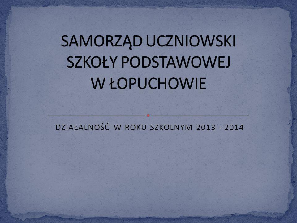 DZIAŁALNOŚĆ W ROKU SZKOLNYM 2013 - 2014