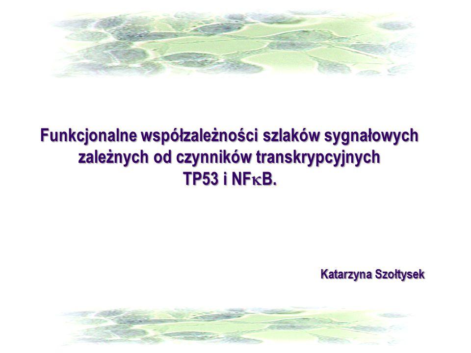 Funkcjonalne współzależności szlaków sygnałowych zależnych od czynników transkrypcyjnych TP53 i NF  B. Katarzyna Szołtysek