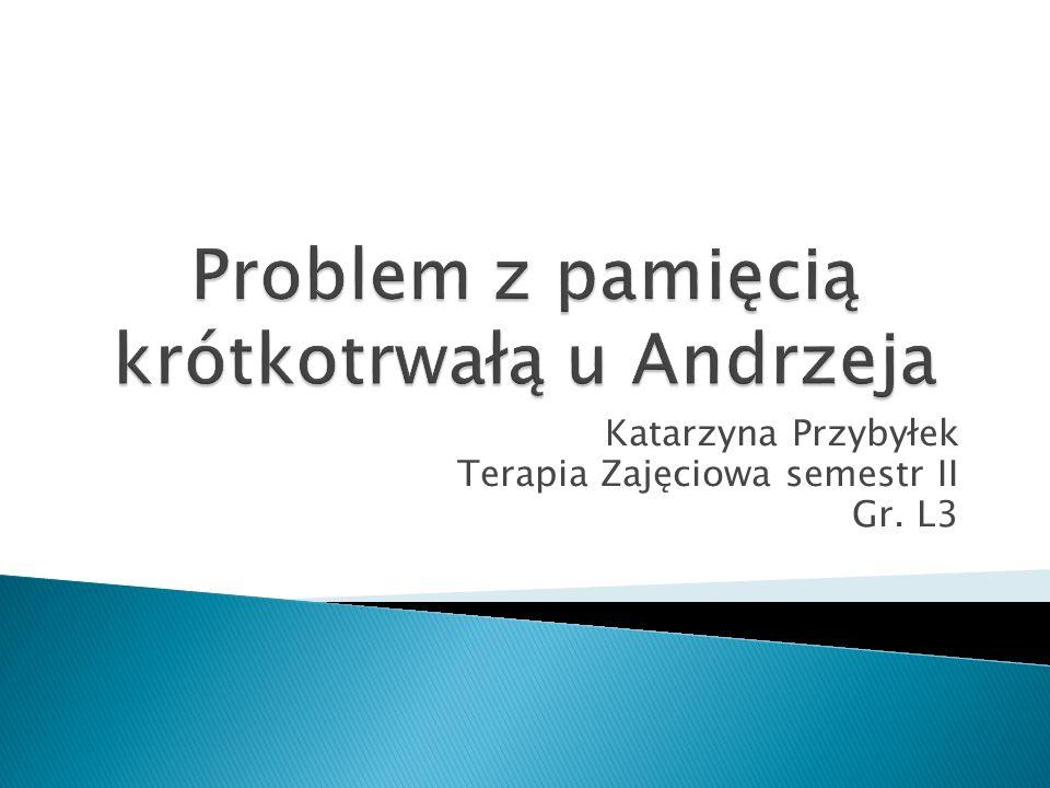 Katarzyna Przybyłek Terapia Zajęciowa semestr II Gr. L3