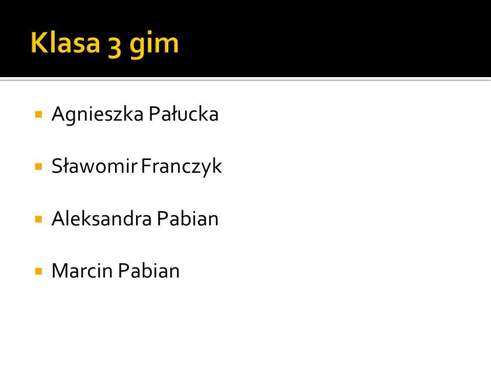  Agnieszka Pałucka  Sławomir Franczyk  Aleksandra Pabian  Marcin Pabian
