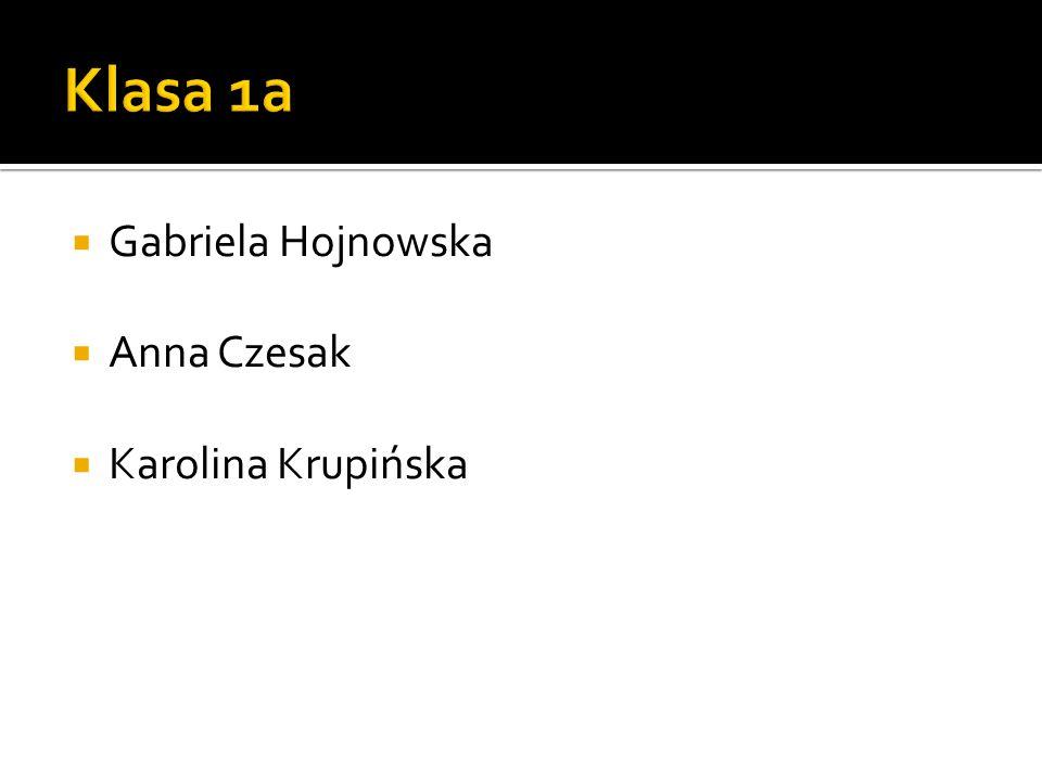  Gabriela Hojnowska  Anna Czesak  Karolina Krupińska