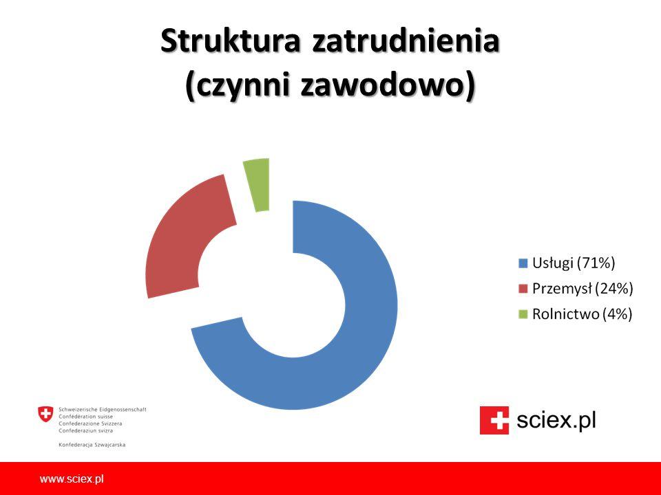 Struktura zatrudnienia (czynni zawodowo) www.sciex.pl