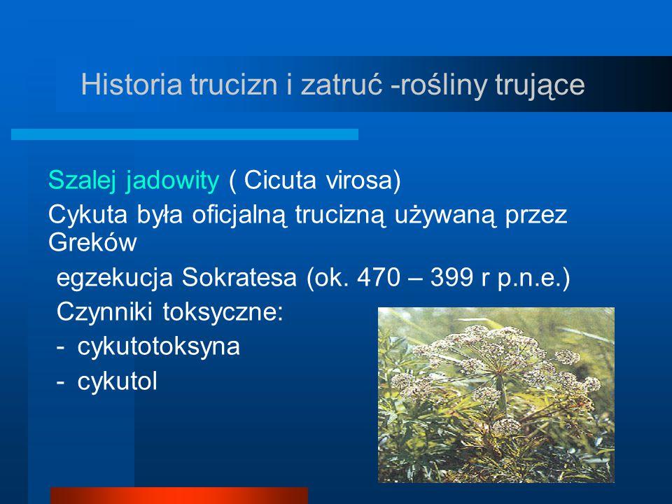 Historia trucizn i zatruć -rośliny trujące Szalej jadowity ( Cicuta virosa) Cykuta była oficjalną trucizną używaną przez Greków egzekucja Sokratesa (o