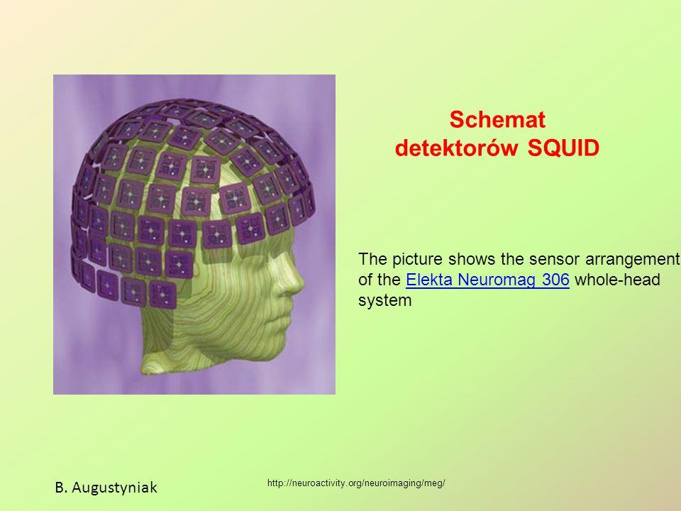 Schemat detektorów SQUID B. Augustyniak http://neuroactivity.org/neuroimaging/meg/ The picture shows the sensor arrangement of the Elekta Neuromag 306