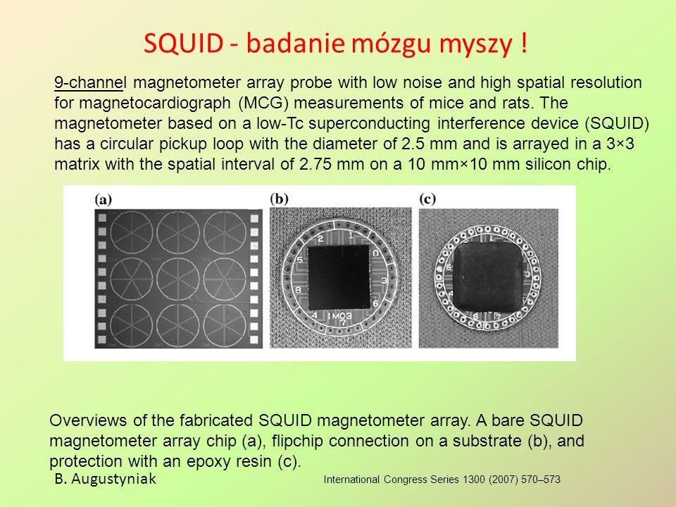 SQUID - badanie mózgu myszy ! International Congress Series 1300 (2007) 570–573 B. Augustyniak 9-channel magnetometer array probe with low noise and h