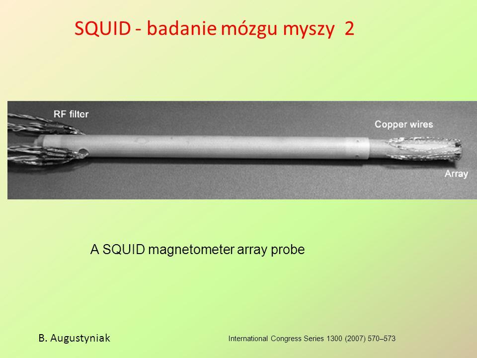 SQUID - badanie mózgu myszy 2 International Congress Series 1300 (2007) 570–573 B. Augustyniak A SQUID magnetometer array probe
