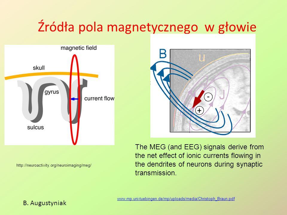Źródła pola magnetycznego w głowie www.mp.uni-tuebingen.de/mp/uploads/media/Christoph_Braun.pdf The MEG (and EEG) signals derive from the net effect o